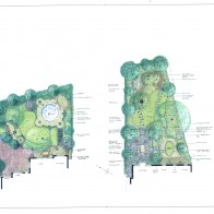 Planting plans and design. Sheffield gardening. U.K.